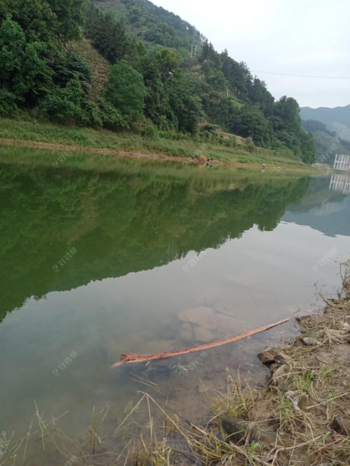 昨天在这边河作钓的钓友今天去对面了。