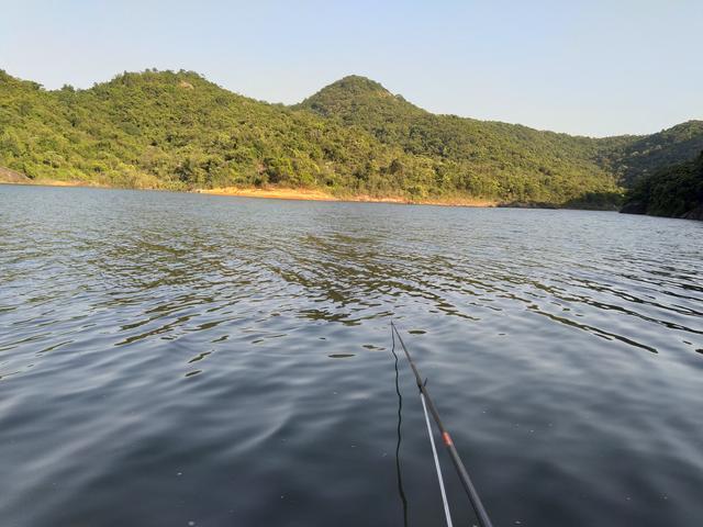 夏末野钓攻略分享,明确对象鱼,找准钓位