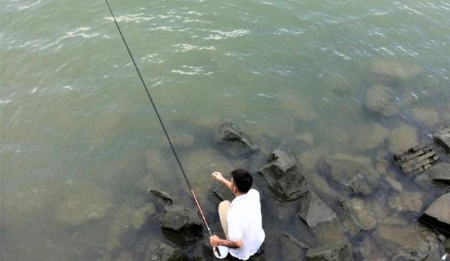 用剩的饵料不要丢,这种饵料夏天钓鱼效果好