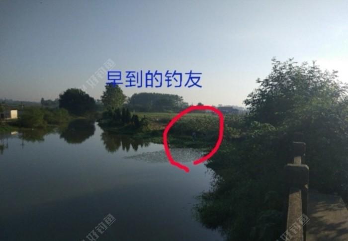 Screenshot_20210724_000817_com.yuqu.diaoyu_edit_89713806684227.jpeg