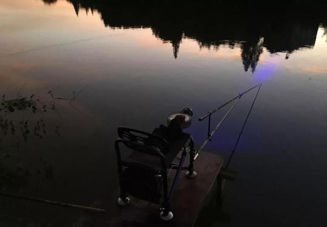 饵料中加点佐料,夜钓鱼口更佳