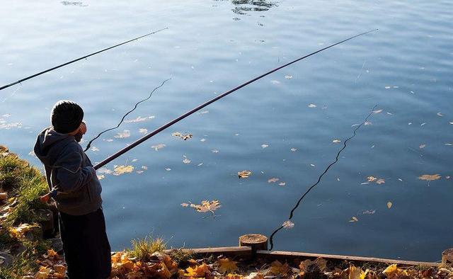 秋冬用蚯蚓钓鱼的技巧方法