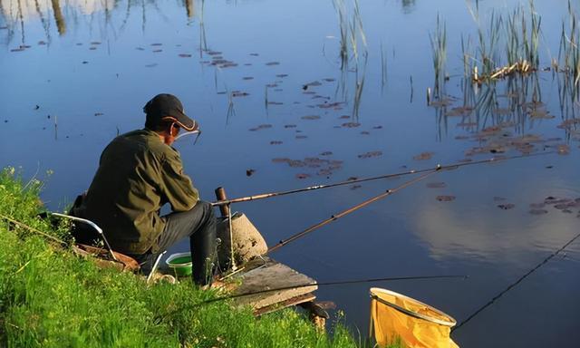 现在记住这七点,钓鱼时让你鱼获翻倍