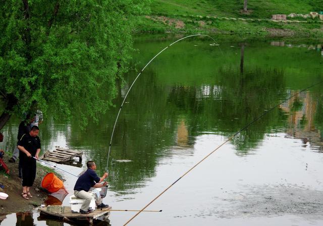 野钓不同深浅的水域,打窝技巧是否影响鱼获?