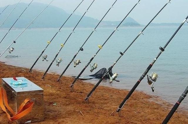 秋钓鲤鱼别整天用手竿了,换用这新型钓法霸气