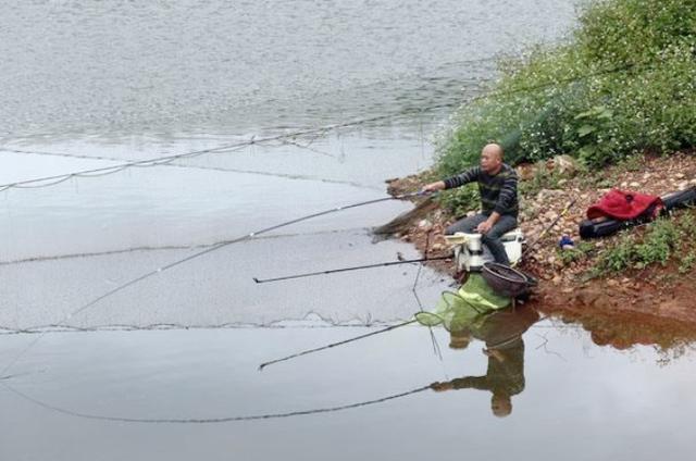 秋钓鲫鱼的过程中,需要钓友掌握的3种钓法手段