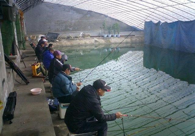 掐鱼怎么玩?掐鱼的钓具选择与技巧